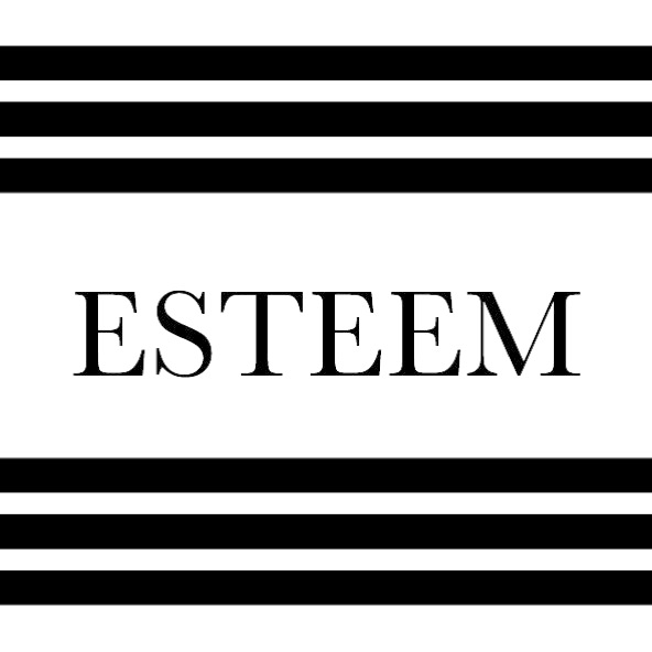 ESTEEM PR MANAGEMENTのロゴ写真
